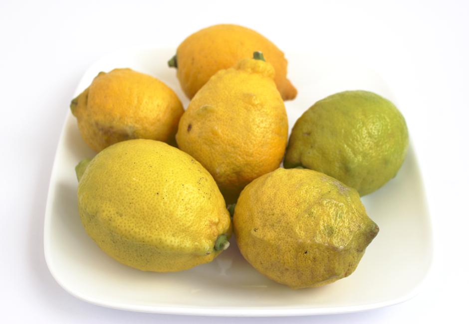 収穫されたレモン。アメリカのものより大きくゴツゴツしている。グリーンレモンの方が香りが強い。