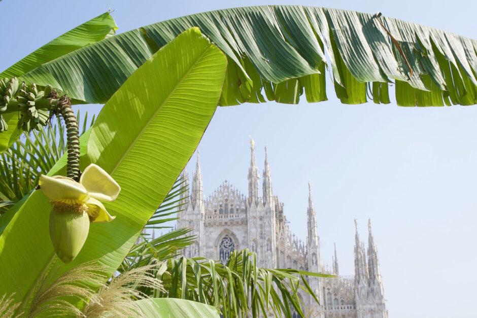 Le Banane al piazza Duomo